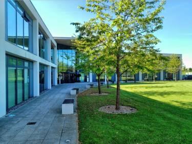 University of Bedfordshire, Лутон