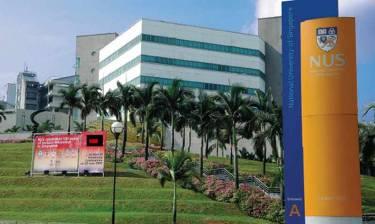 National University of Singapore IT Camp (Летний лагерь с программированием)